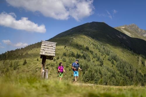 Toursuche Murau Holzwelt - Führungen mit zertifizierten Guides 18