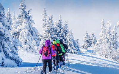 Schneeschuhwandern in der Region Murau
