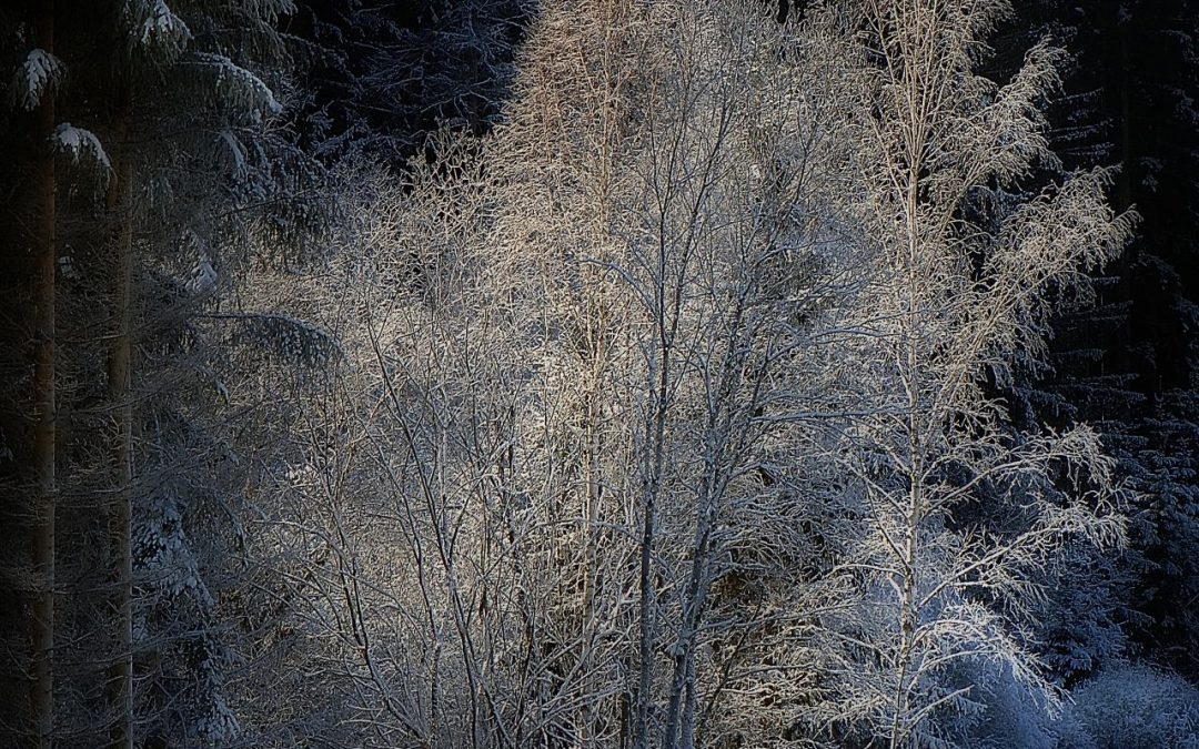 Winter Ge(h)schichten Oberwölz